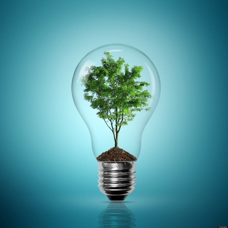 Groene energie is populair